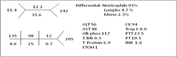 lab diagram for cbc wiring diagram rh w74 blacz de cbc lab values diagram