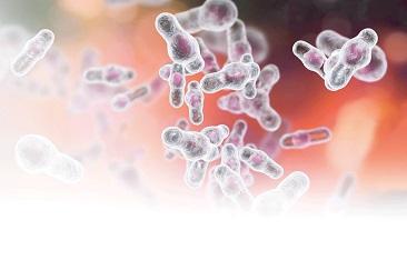 Clostridium difficile infection after antibiotic use