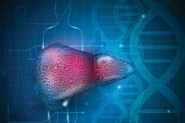 Inside autoimmune liver disease