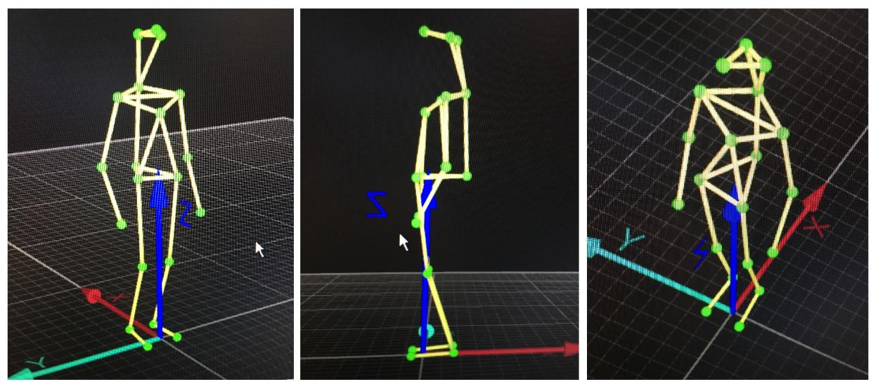 motion capture.PNG